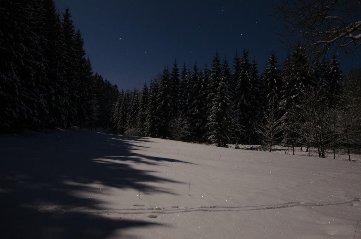 Sieglitzgrund bei Mondschein