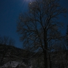 Sieglitzgrund im Mondschein