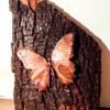 Schmetterling Kupfer